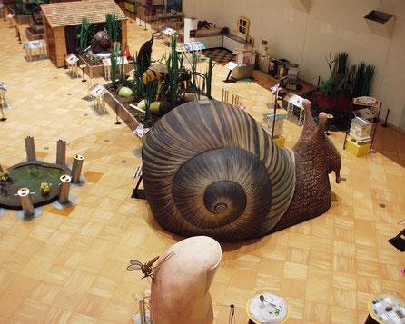 Caracol Giante 5 metros, Exposición Museo de Ciencia, Lisboa