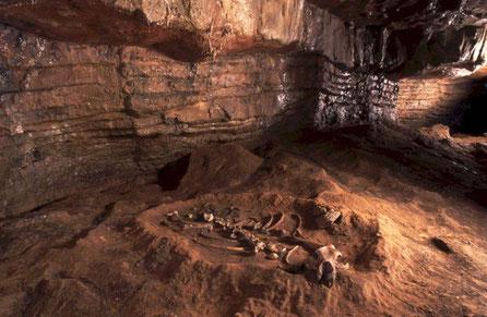 Osera, Neo Cueva de Altamira