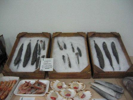 Ficticios de Cajas de Merluza (tipo lonja) , para Museo del Mar