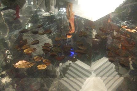 Escenografía para Exposición El Arte de lo Imposible, Escher en la sala de Isabel II, Fundación El Canal.