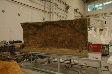 Maquet del Abric Romaní (asentamiento Neanderthal) (Museo de la Evolución Humana)