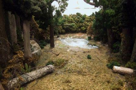 Maqueta de Claro de Bosque, Para Expo Zaragoza