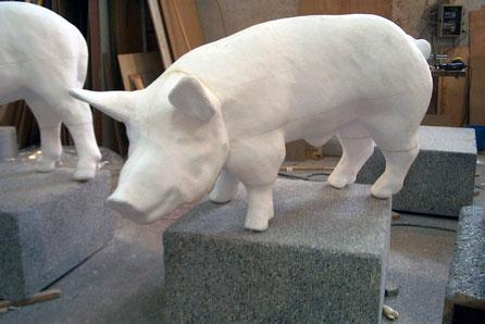 Cerdo, Porcino