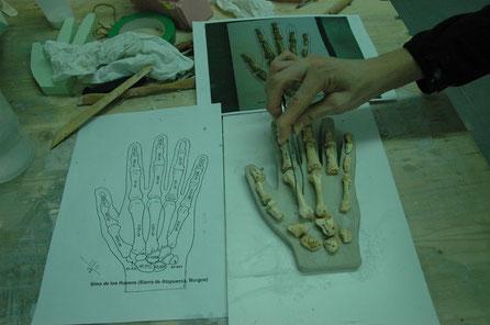Base con alojamintos para exponer los huesos de la mano, yacimiento Atapuerca