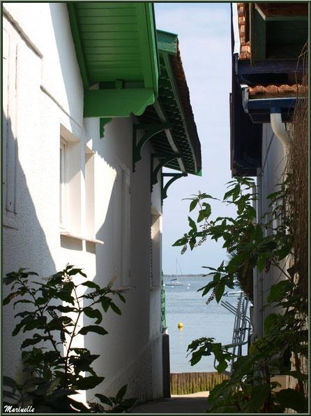 Ruelle menant vers le Bassin, Village de L'Herbe, Bassin d'Arcachon (33)