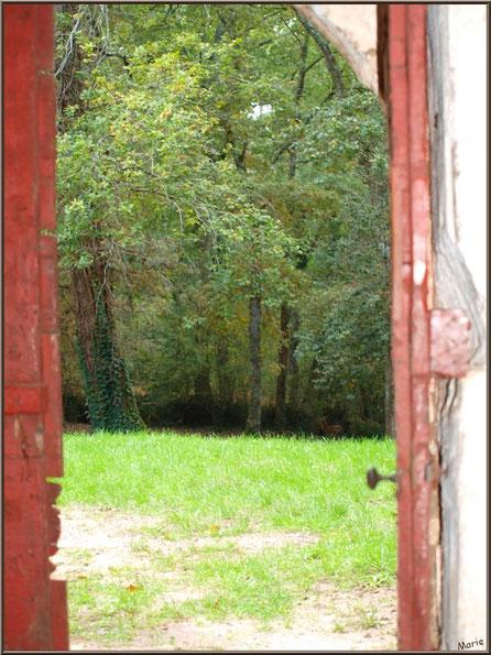Eglise St Michel du Vieux Lugo à Lugos (Gironde) : porte d'entrée ouverte vers la clairière