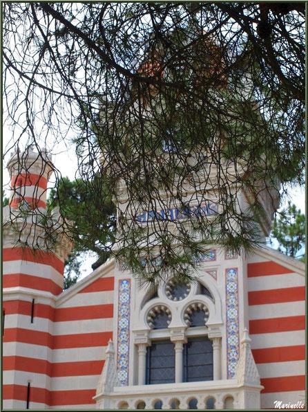 Chapelle Algérienne, façade, le clocher et le balcon dissimulés derrière un pin, Village de L'Herbe, Bassin d'Arcachon (33)
