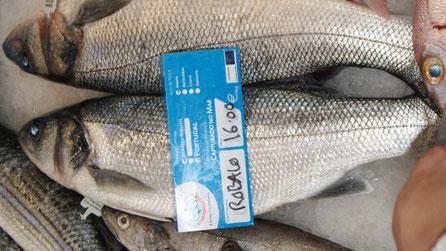 Wolfsbarsch,Robalo,Seabass,Fisch,Peixe,Fish,Martins-Kulinarium,Algarve,Portugal