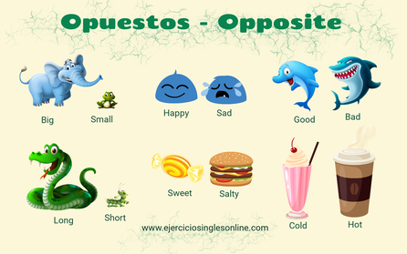Opuestos en inglés - Kids vocabulary