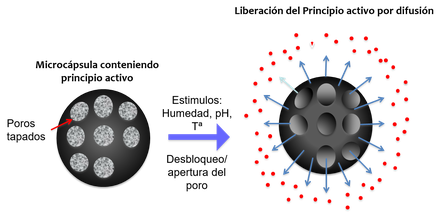 Microcápsula con sistema de puertas moleculares que se abren en función de un determinado estímulo
