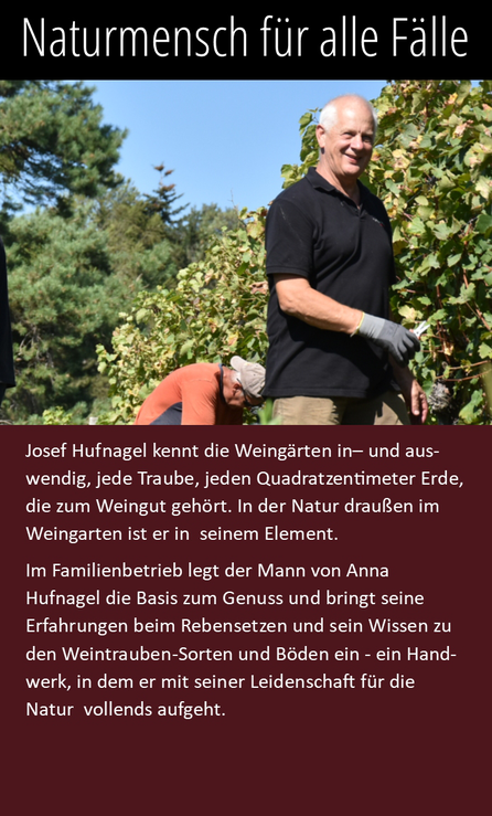 Josef Hufnagel kennt die Weingärten wie kein anderer. In der Natur draußen im Weingarten ist er in seinem Element.