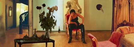 "Шеф, Женя, ""Спящая красавица"", 3D light box, 17 х 48 х 5 см, 2003"