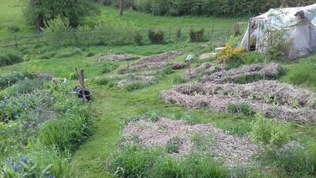 菜圃與溫室