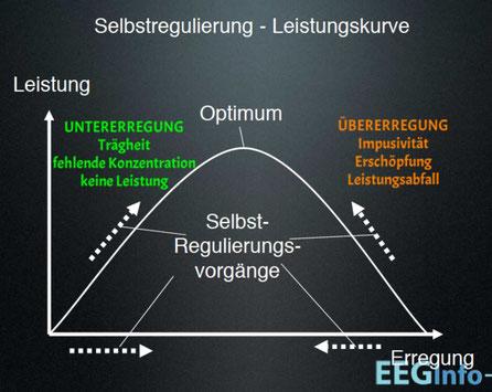 Selbstregulierung. Leistung in Zusammenhang mit Erregungslevel
