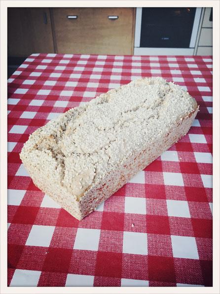 Glutenfreies Brot Thermomix, Brot glutenfrei Thermomix, Quinoa Brot Thermomix, Reis Brot Thermomix, Buchweizen Brot Thermomix