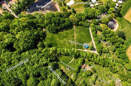 Übersicht Baumhaushotel Solling, Bild: Bastian Kulp.