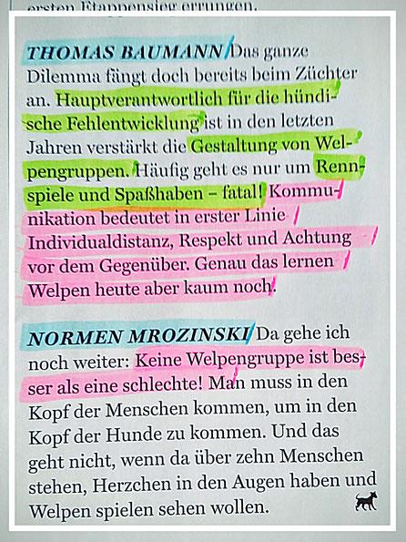 Welpenerzeihung, Welpengruppe, Thomas Baumann, Normen Mrozinski,