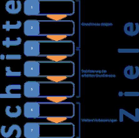 Schritte Grundreinigung, Verschmutzungsquellen und Zugänglichkeit, Vorläufige Standards, Qualifizierung, Beginn der autonomen Instandhaltung, Organisation und Optimierung, Autonome Instandhaltung. Ziel Grundniveau steigern, stabilisieren, Weiterverbessern