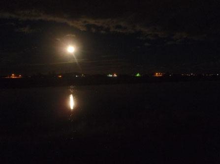 田面に映る月。人も何かに映らないと自分自身に気付けない