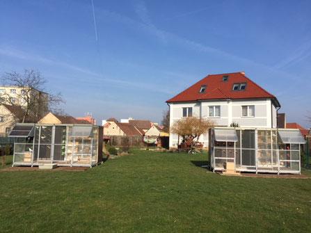 Fußboden Im Taubenschlag ~ Mobiler taubenschlag volieren bönnighaus sonderanfertigungen