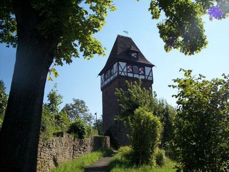 Der Försterbergturm,  das Wahrzeichen von Stadtoldendorf, auch auf unserer Plakette.