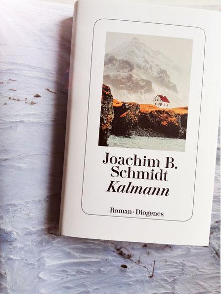 Buch Cover Roman Kalmann von Joachim B. Schmidt Diogenes Verlag
