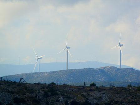 Investir dans les énergies renouvelables
