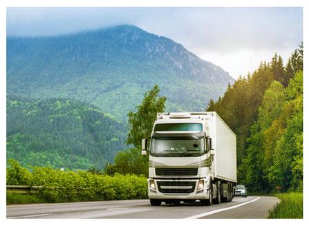 Lkw-Ortung mit GPS für LKW und Lastzug
