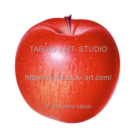 リンゴ丸 RD10628