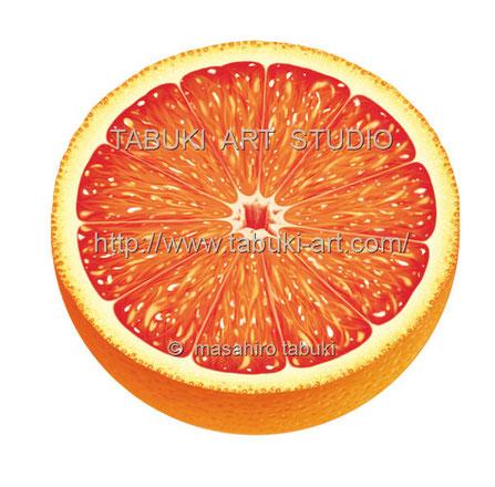 ブラッドオレンジ半切 RD_10507