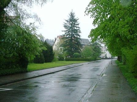 Emmendingen im Regen