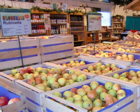 Auf dem Obsthof erhält man lokale und umweltfreundliche Nahrungsmittel aus eigenem Anbau in Lindau.
