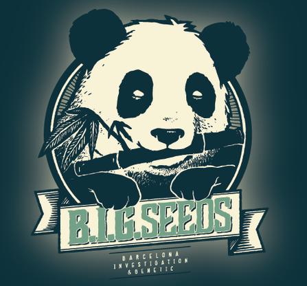 bigseeds, big seeds, big seeds semillas marihuana