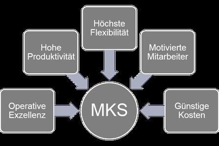 Die MKS-Leistungen