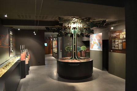 musée de la truffe