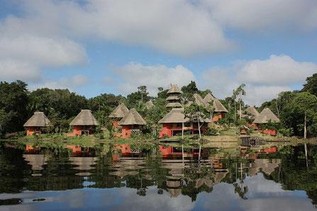 Regenwald Ecuador: Napo Wildlife Center bei ECUADORline buchen