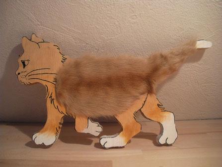 Streicheltier Katze laufend