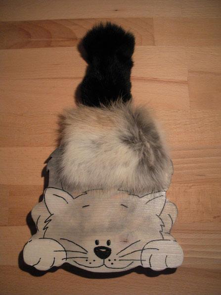Streicheltier Katze
