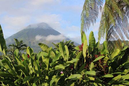 Costa Rica - (C) gindeslebens.com