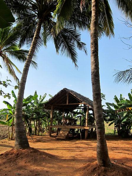 Rice Villa bei Polonnaruwa
