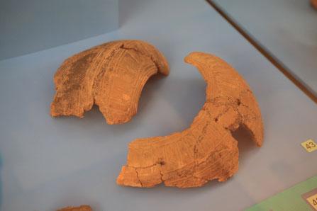Archäologie Kanarische Inseln Guanchen