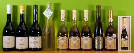 zur Shop-Seite Weine vom Weingut Evinor
