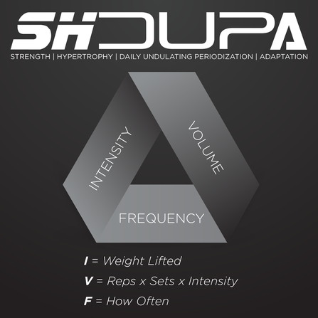 ALL ABOUT SHDUPA - Fausey's Fitness