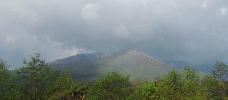 本日5/16朝のワンコ散歩時。ミドリに染まり始めた小高倉山に虹がうっすら現れて・・・