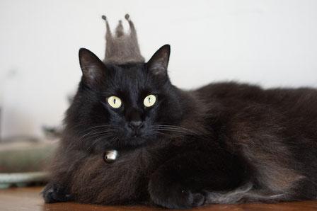 仲本律子 陶芸作家 ブログ 女性陶芸家 茨城県笠間市  陶炎祭 猫
