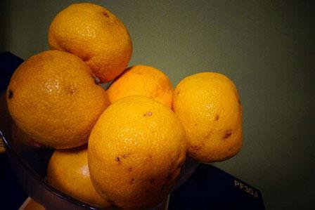 こんなにあるから、今日はタンポポでも特別に柚子湯にしようかなぁ~へへへ。