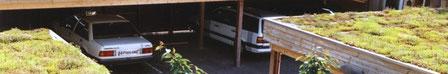 Alles zum Thema Carport und Carports mit Gründach
