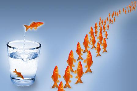 Neue und andere Wege gehen! Der Wurm muss nicht dem Angler schmecken. Werbung hinterfragen und besser und effizienter gestalten