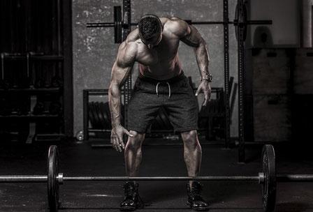 shoulder workout dumbbell press