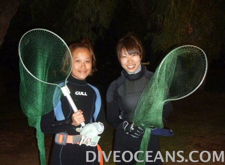 Beach Night Diving